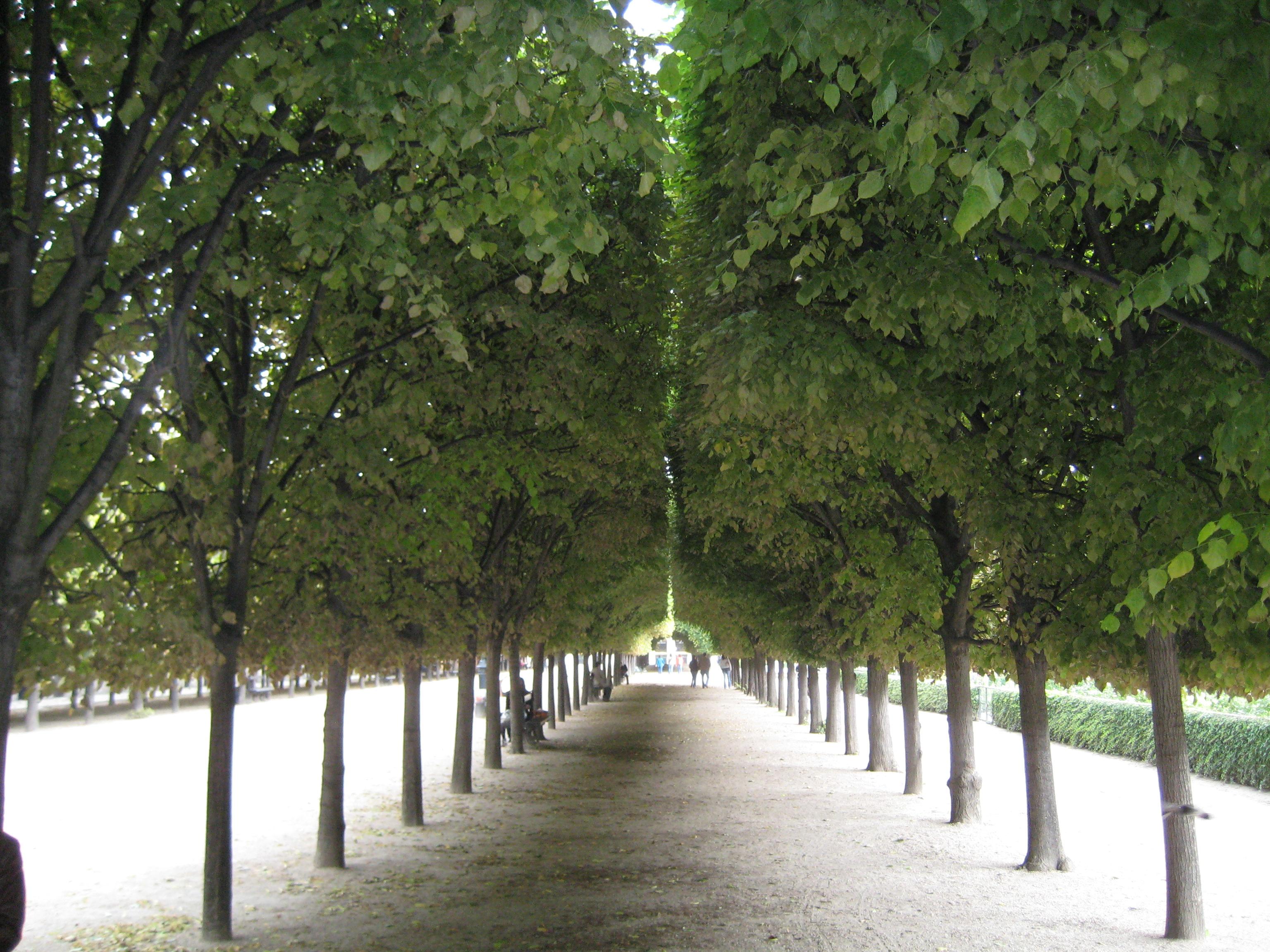 Paris parks | The Philadelphia Flower Show Blog