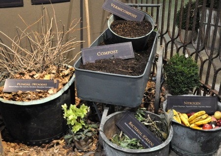 Picture of compost ingredients